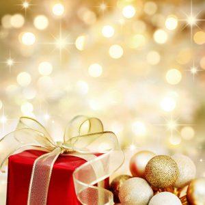 nelson christmas gift