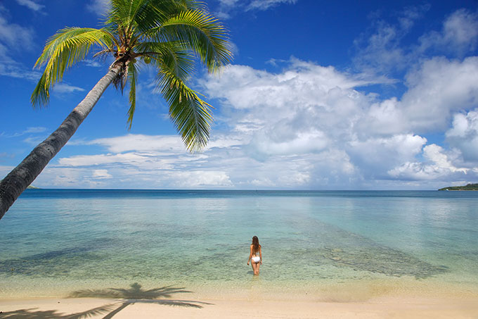 Pure Fiji Nelson