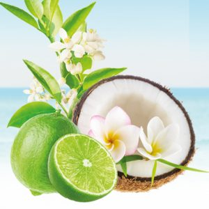 Pure fiji Coconut and Lime Blossom Woman Nelson