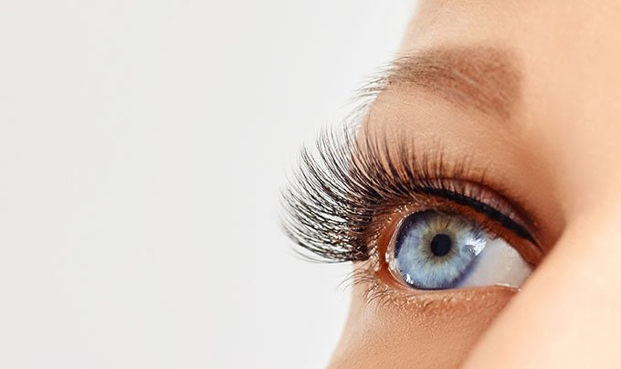 lash lifts in nelson